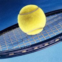 Ale Tenis Club